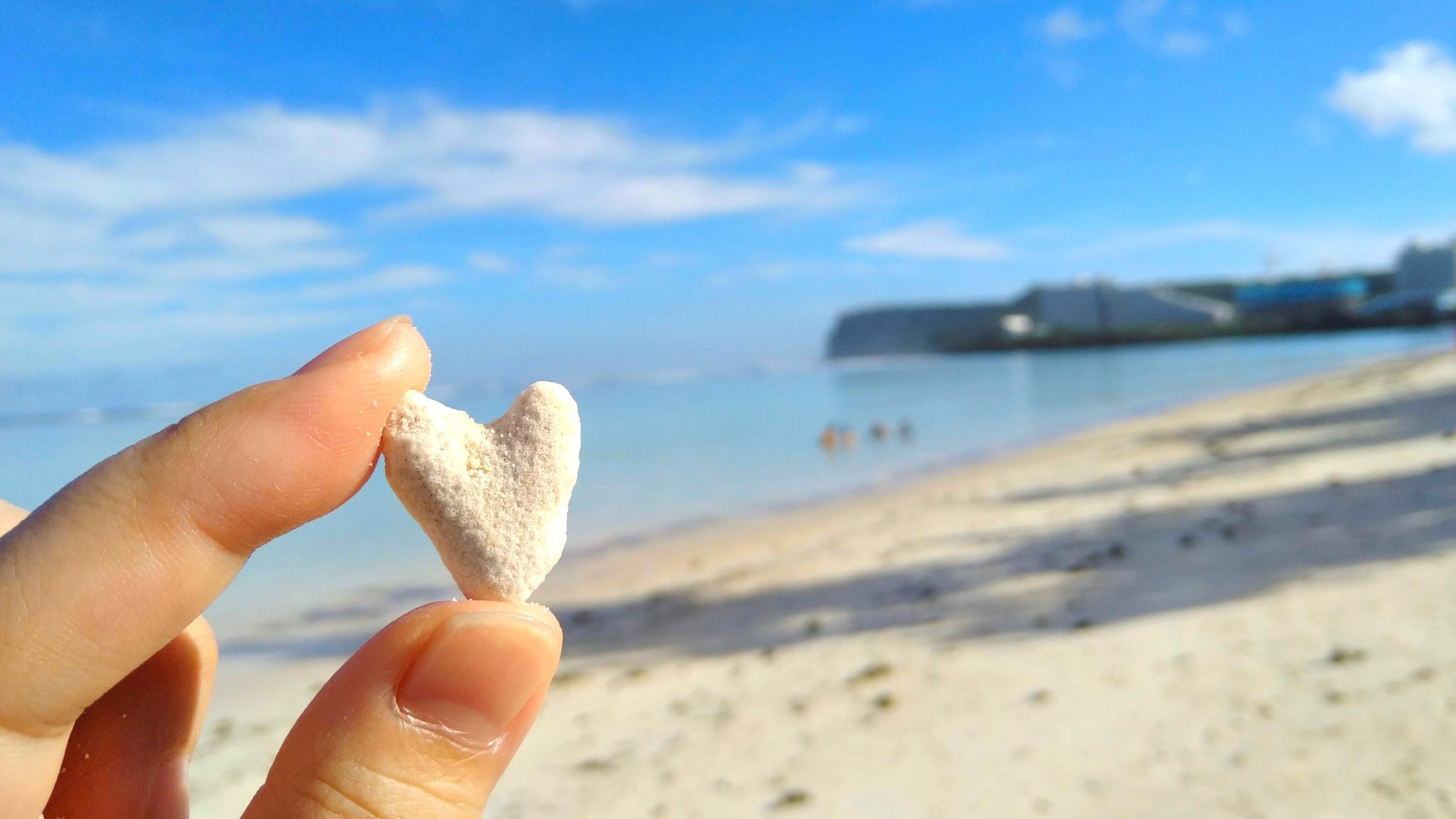 グアムで拾ったハート珊瑚